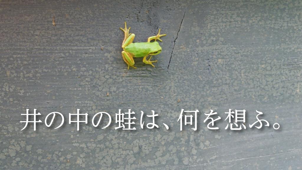 井の中の蛙は何を想ふ